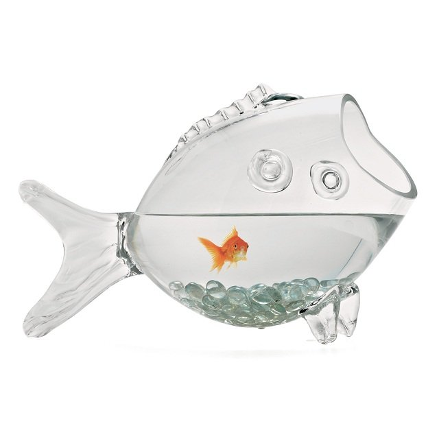 Aquarium verre en forme de poisson avantjetaisriche for Bocal a poisson pas cher