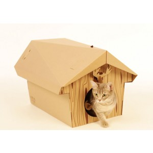 cabane-chalet-chat