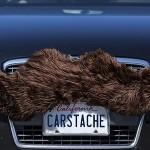 carstache-marron-tuning