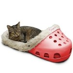 chaussure fourree pour chat