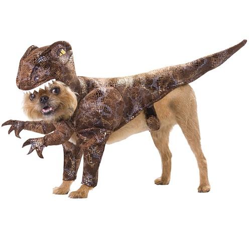 combinaison velociraptor pour chien