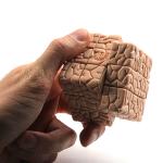 rubiks-cube-cerveau