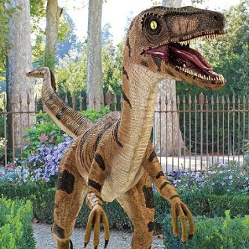 velociraptor-taille-reelle