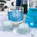 cerveau-glacons-cervelle