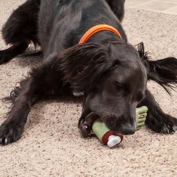 jouet-pour-chien-zombie-pied