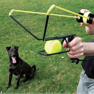 lanceur de balles de tennis pour chien vous le ferez. Black Bedroom Furniture Sets. Home Design Ideas