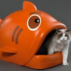 Litière pour chat poisson
