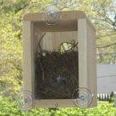 maison-oiseau-fenetre-transparente-ventouse