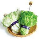 parapluie-salade-vegetabrella