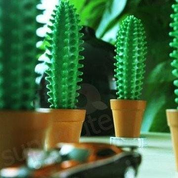 stylo-cactus