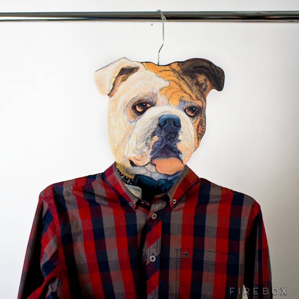 cintre-chien