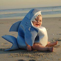 Costume bébé requin