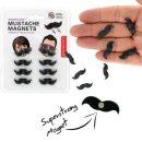 magnet-moustache-kikkerland-aimant-lot