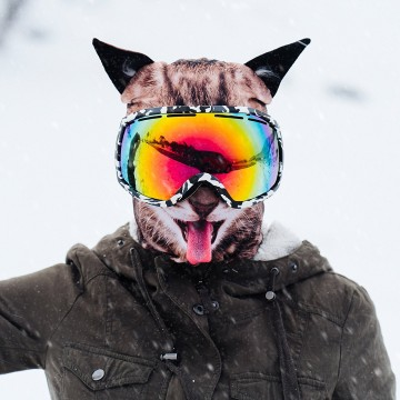 cagoule-ski-animaux-chat
