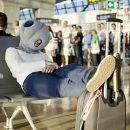 oreiller-de-voyage-ostrich-pillow