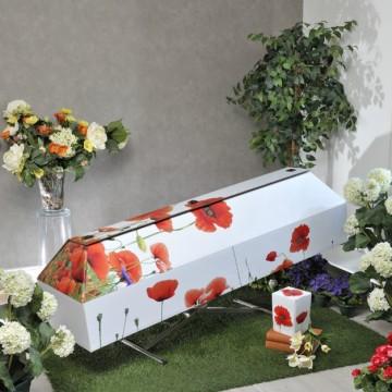 cercueil-en-carton