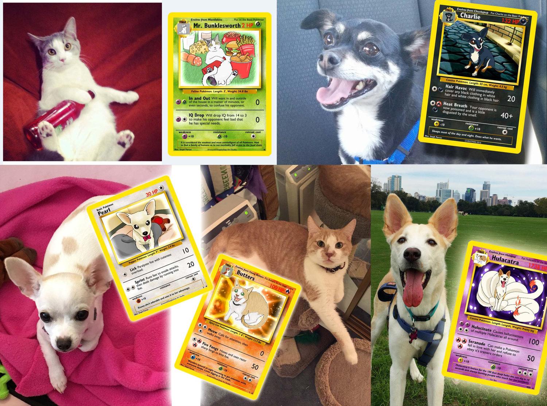 carte-pokemon-personnalisee-animal-de-compagnie-chat-chien-1