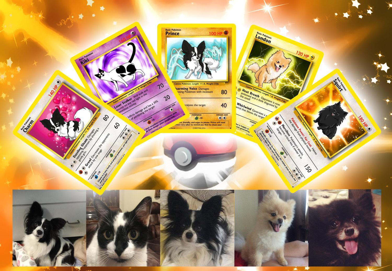 carte-pokemon-personnalisee-animal-de-compagnie-chat-chien-2