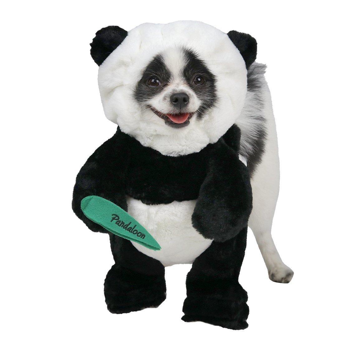 costume panda pour chien avant j 39 tais riche. Black Bedroom Furniture Sets. Home Design Ideas