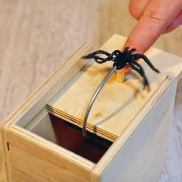 boite-araignee-piege-farce-et-attrape-spider-box