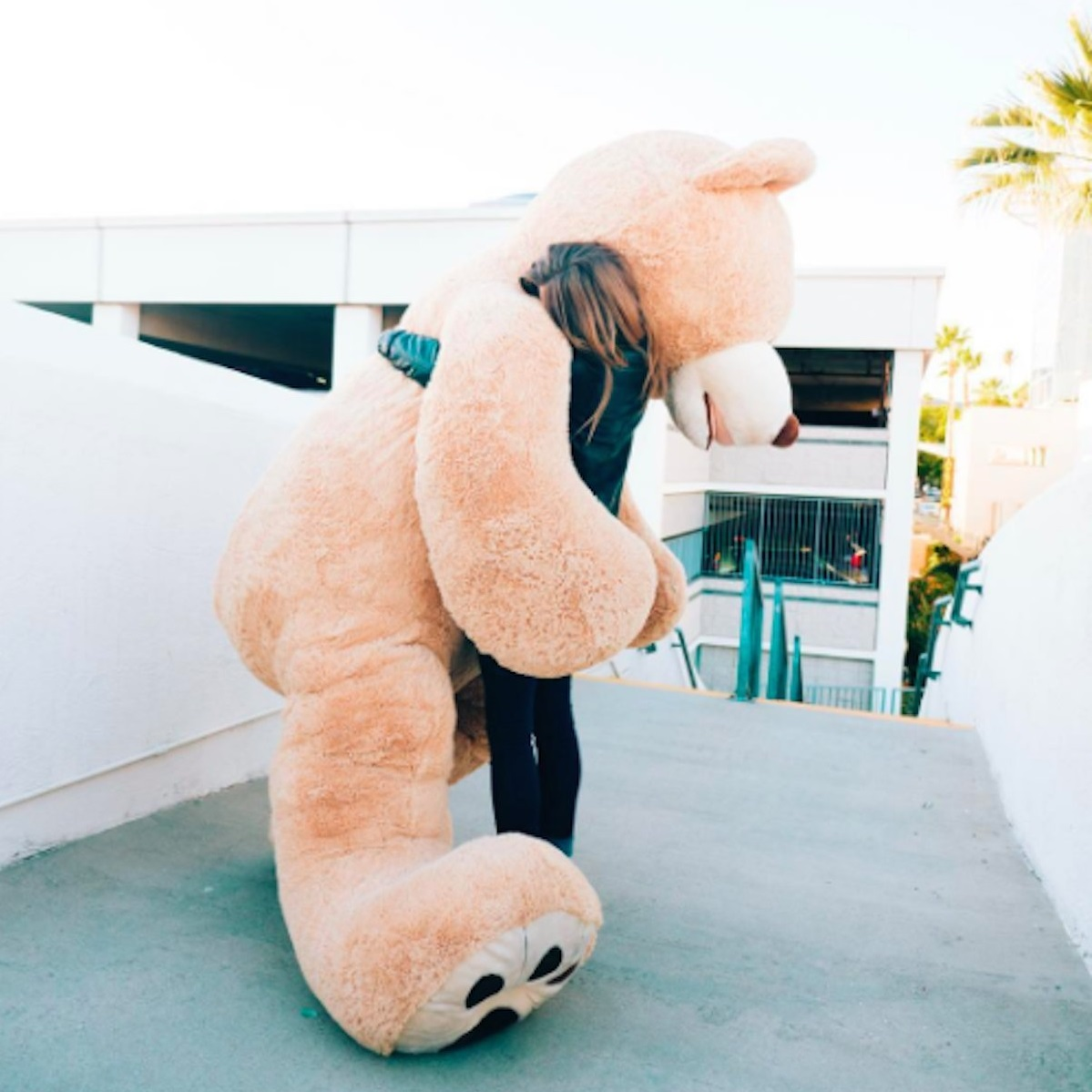 ours-geant-nounours-340-cm-3-metres-12