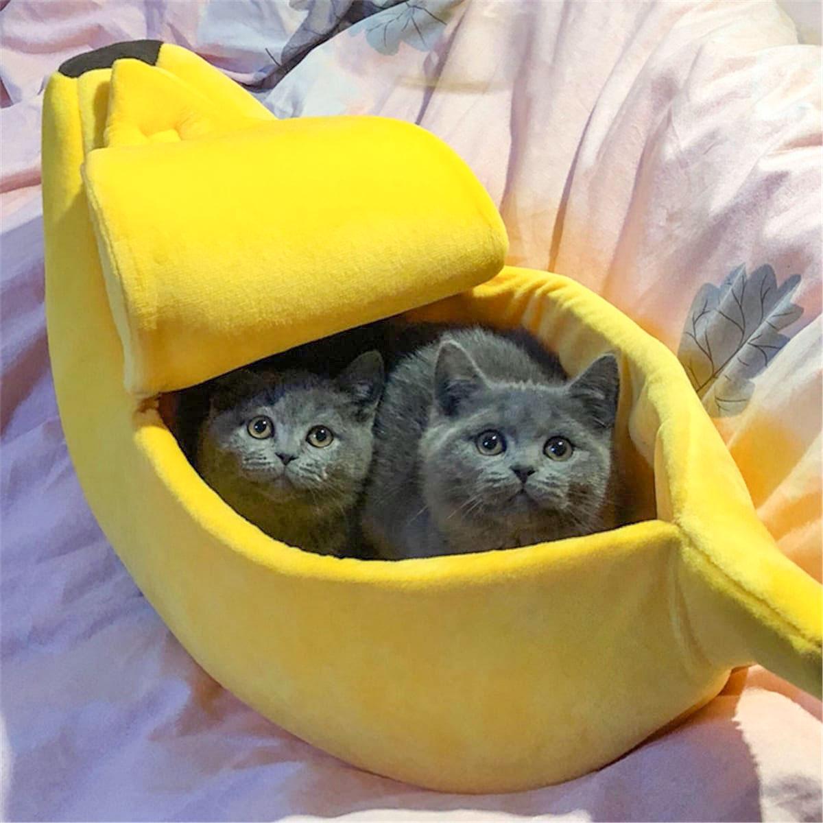panier-pour-chat-banane-cute-(1)