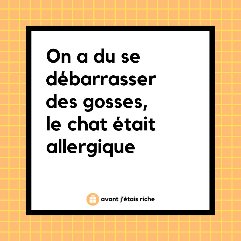 on-a-du-se-separer-des-gosses-le-chat-etait-allergique