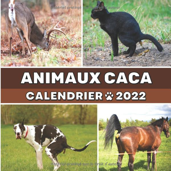 calendrier-2022-animaux-caca